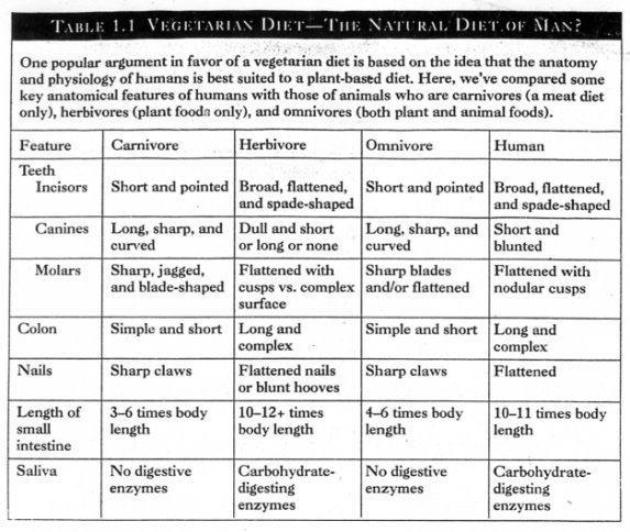List of Animals That Are Herbivores Carnivores And Omnivores images